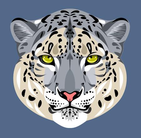 snow leopard: Portrait of leopard muzzle Illustration
