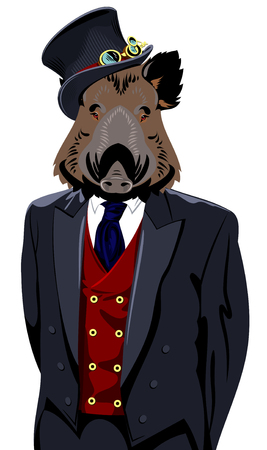 man's suit: wild boar in the business mans suit and top hat
