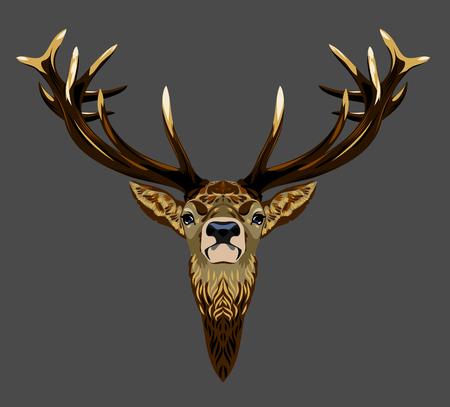 christmas winter: deer portrait