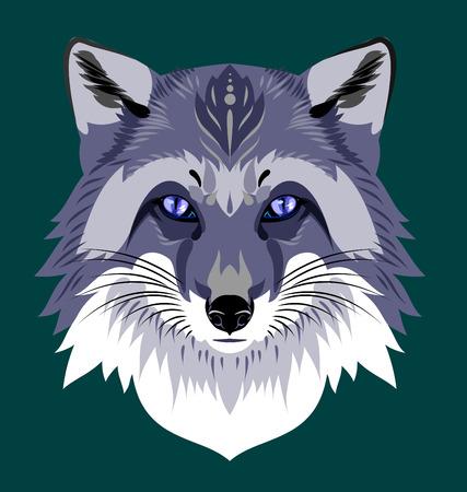silver fox: portrait silver fox Illustration