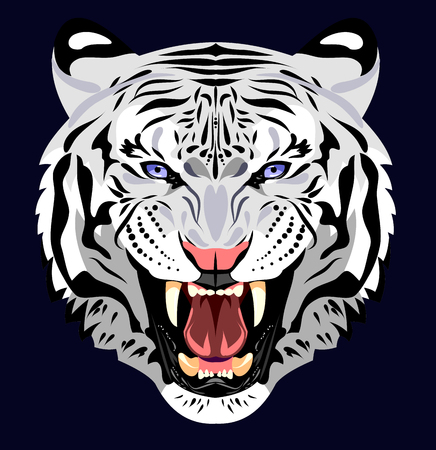 bared: Portrait of an angry tiger bared Illustration
