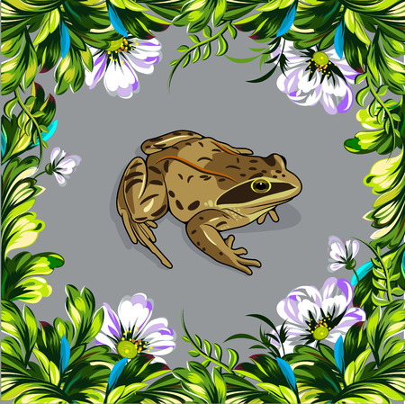 bullfrog: Floral summer frame with tender wildflowers and little frog