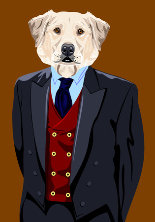 labrador: Portrait of a Labrador dog in the mens suit