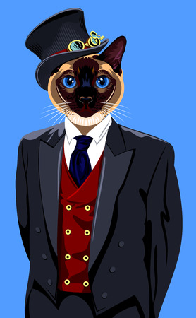 siamese cat: Portrait of a Siamese cat home in a business suit and hat cylinder