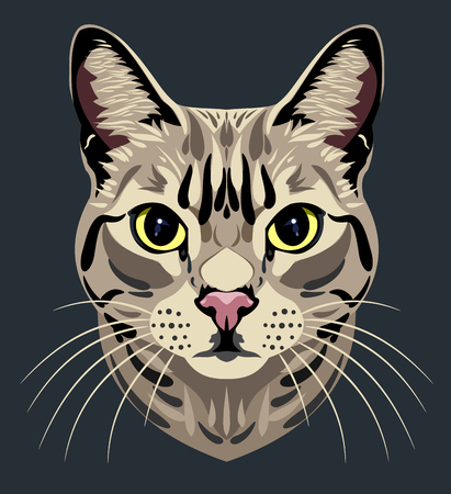 eyes looking down: Portrait of a domestic tabby Illustration
