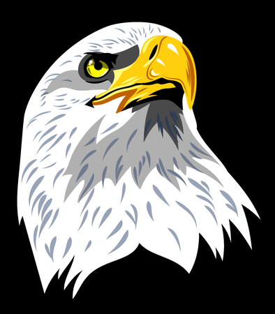 head profile: Portrait of an eagle