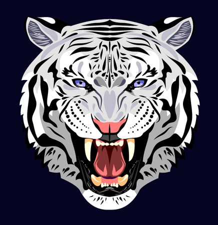 Portrait of a tiger bared