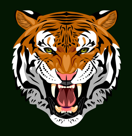 bared: Bared in a terrible rage tiger