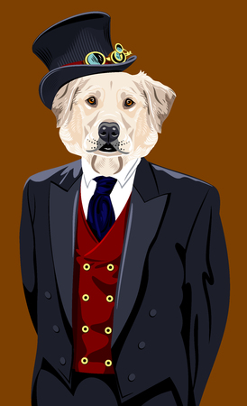Portrait of a labrador dog in a mans business suit Stock Photo