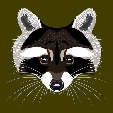 omnivorous: Portrait of a raccoon Illustration