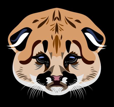 Portrait of a baby lynx vector illustration Illustration
