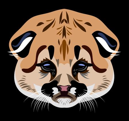 lynx: Portrait of a baby lynx Illustration