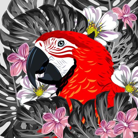 periquito: Macaw loro en la espesura de hojas y flores tropicales