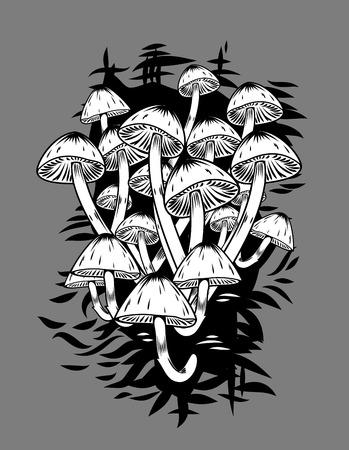 Most fragile mycelium mushrooms on thin legs. Graphic illustration Illustration