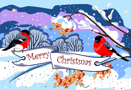 Bullfinches and a banner with the wishes of a Merry Christmas Illustration