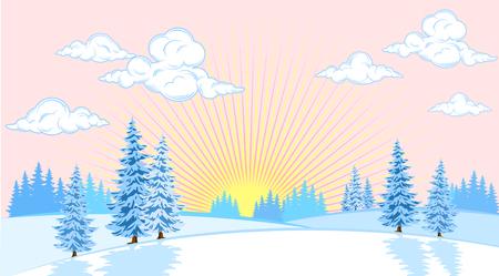coniferous forest: paisaje de invierno con abetos en el fondo llano del sol Vectores