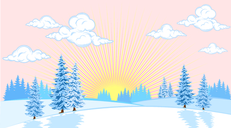 plain background: Winter landscape with fir trees on the plain background of the sun