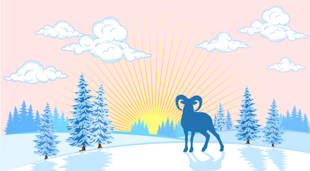 Winter landscape of plains with trees and wild sheep in the background of the sun Vektorové ilustrace