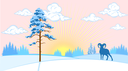 Winter landscape of plains with trees and wild sheep in the background of the sun