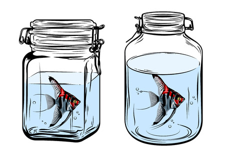 Bottles, round and square shapes, with a angelfish inside, freehand drawing