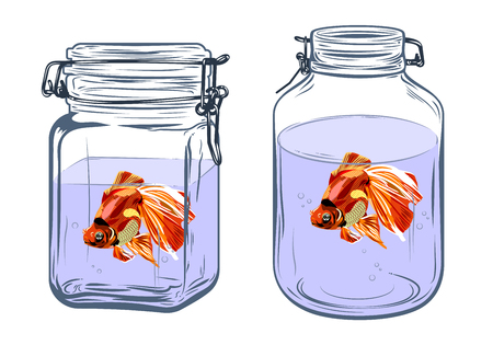 Bottles, round and square shapes, with a goldfish inside, freehand drawing