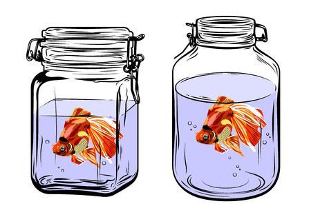 cichlid: Bottles, round and square shapes, with a goldfish inside, freehand drawing