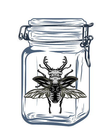 Beetle in a glass jar, freehand drawing