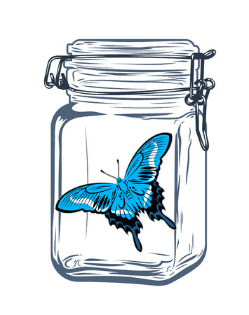 Butterfly in a glass jar, freehand drawing