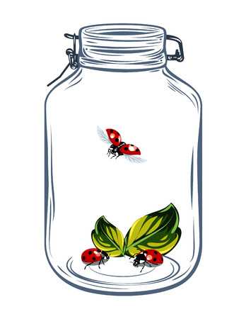 Bugs ladybugs in a glass jar, freehand drawing Illustration
