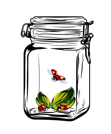 Insectos de las mariquitas en un frasco de vidrio, dibujo a mano alzada Vectores