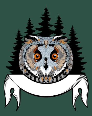 Portrait of an owl in the woods and banner background Illustration