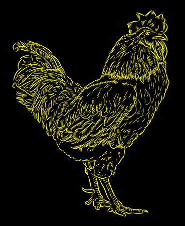 Portrait of a cock made in engraving style (doodle) Illustration