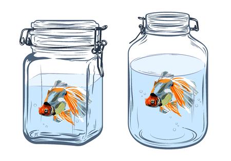 Goldfish in a bottle