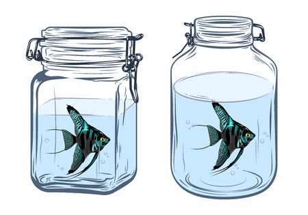 Angelfish in bottle