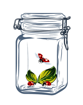 Ladybirds in a bottle