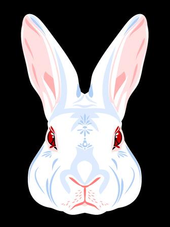 Portrait of a white rabbit Stock Photo