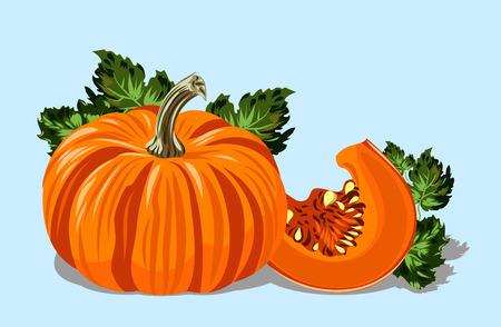 Mature striped and orange pumpkin