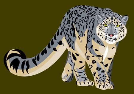 portrait of a snow leopard