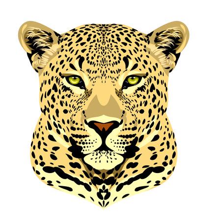 Portrait d'un léopard tacheté Vecteurs