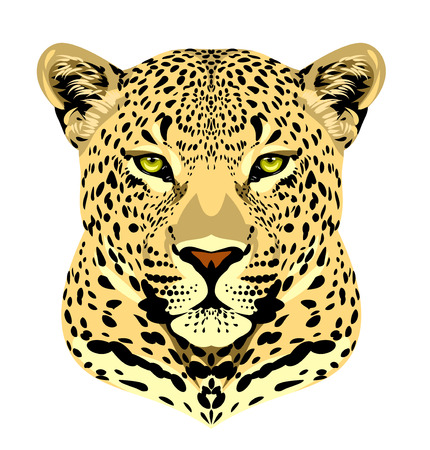 Portrait of a spotted leopard Illustration