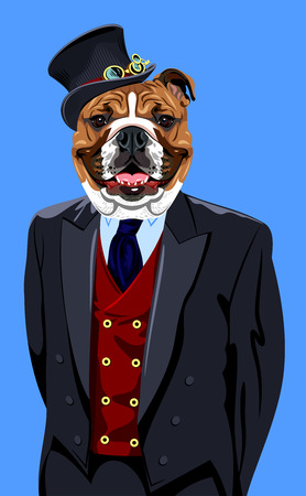 Portrait of English bulldog in the men's business suit and hat Stock Illustratie