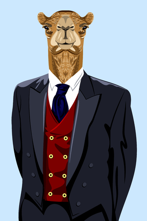 Portrait of a camel in the mens business suit
