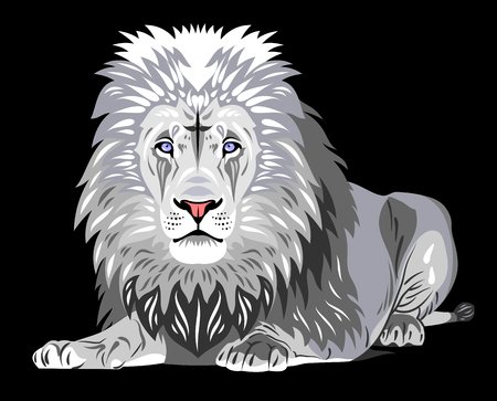 Portrait of African lion lying