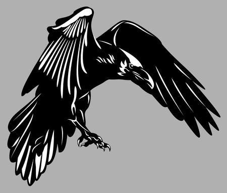 Portrait of a raven flying Vector Illustration