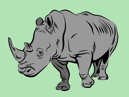 Vector image of a rhinoceros Ilustrace