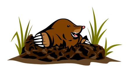 Mole kommt aus dem Loch im Boden Standard-Bild - 92101590