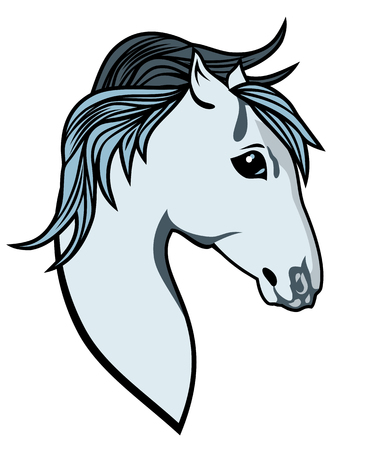 Arabian horses equestrian Illustration