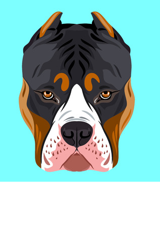 Portrait of a dog breed pit bull terrier Vector illustration.