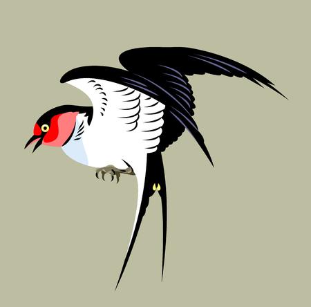 Portrait of a Swallow Illustration