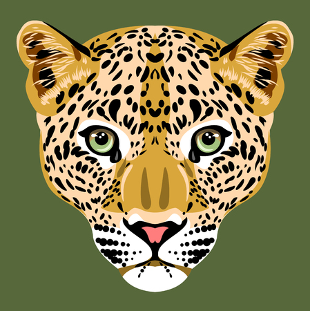 Portrait of a young spotted leopard